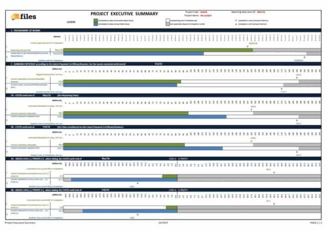 Construction project executive summary template
